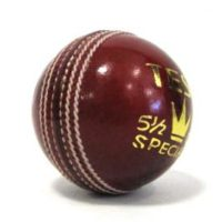 Test Special Cricket Ball