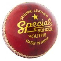 Readers Special Schools Cricket Ball