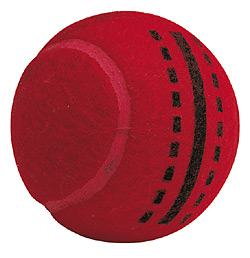 Readers All Play Assorted Cricket training Balls (box of 6)