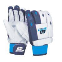 ED Sports THE WILD Cricket Batting Gloves