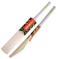 Gray Nicolls Velocity XP1 Warrior Kashmir Cricket Bat - Junior