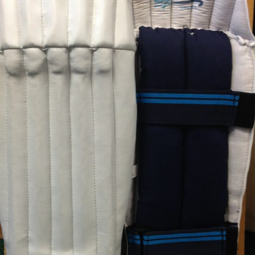 ED Sports The WILD Wicket Keeping Pads